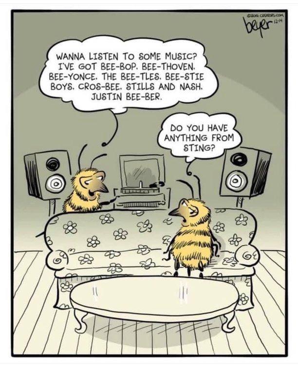 Bee music.jpg